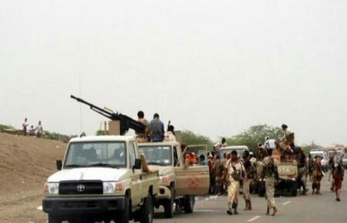 اليمن   ألوية العمالقة تعلن استكمال تطهير مزارع وجيوب المليشيا غربي الدريهمي