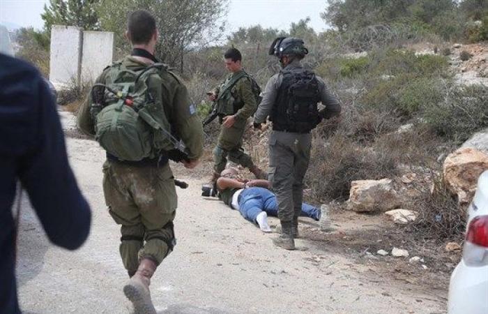 فلسطين   إصابات واعتقالات خلال تصدي المواطنين لعمليات تجريف غرب رام الله