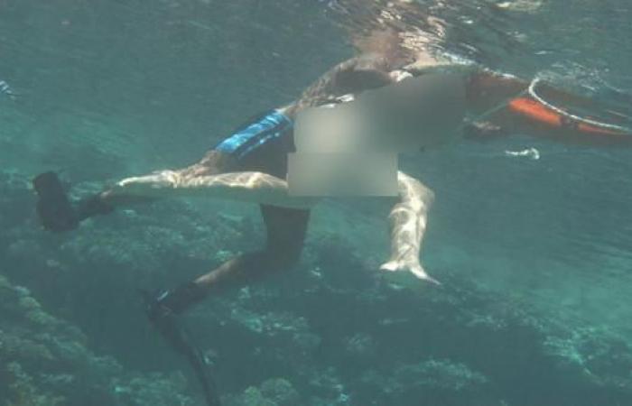 مصر   مصر.. توقيف المدرب الذي تحرش بسائحة تحت الماء
