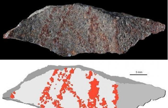 علماء يعثرون على أقدم رسم بشري عمره 73 ألف سنة
