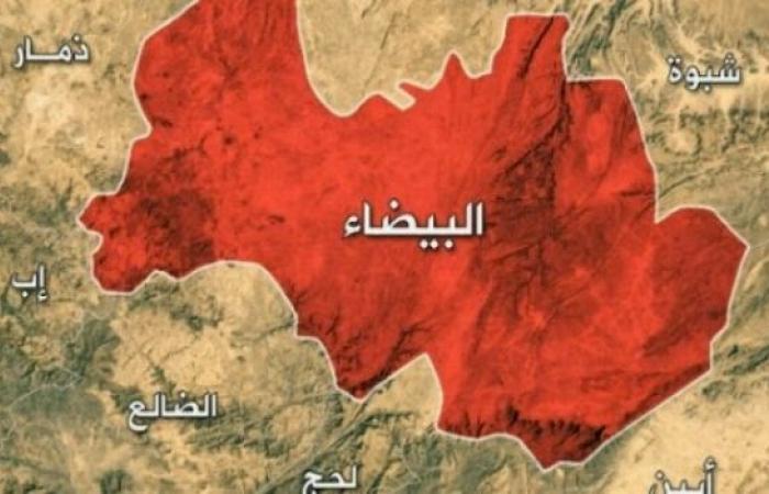 اليمن   قبائل «البيضاء» تمهل الحوثيين 24 ساعة