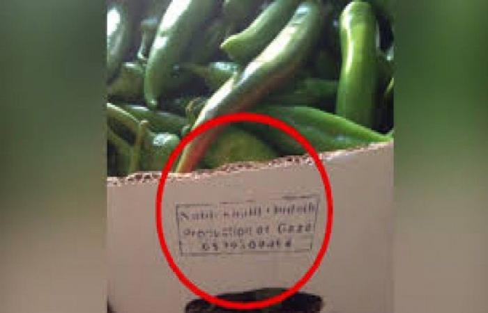 فلسطين   جيش الاحتلال الاسرائيلي يوقف شراء الخضراوات من قطاع غزة