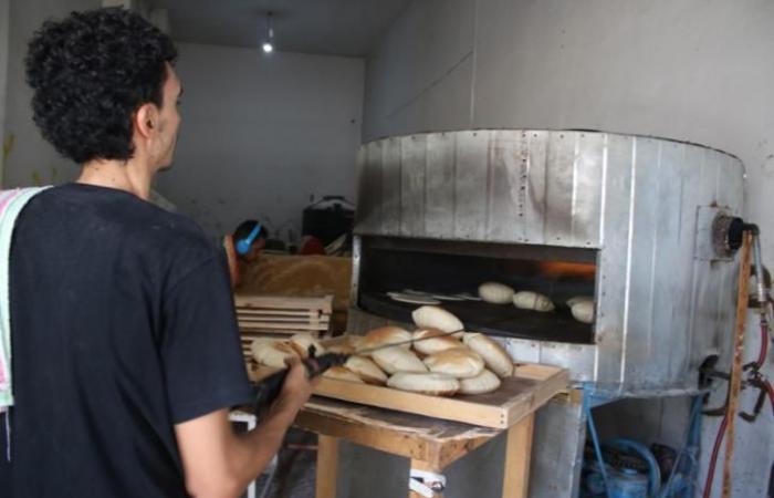 """فلسطين   غزة: 3 آلاف مواطن بينهم جامعيون يتقدمون لوظيفة """"عامل في مخبز"""""""