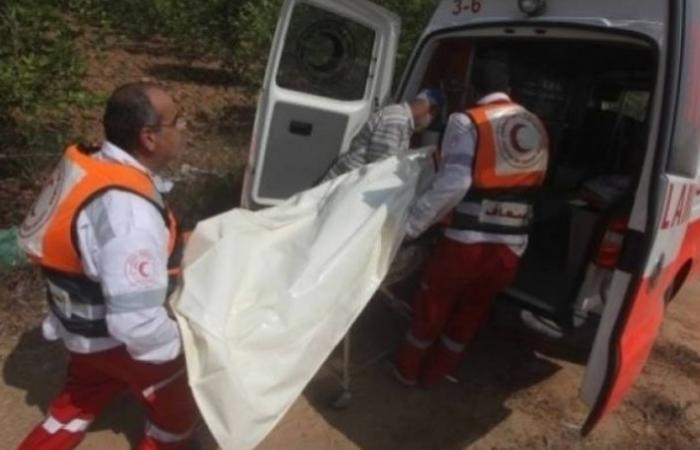 فلسطين   العثور على جثة فتى في النقب بظروفٍ غامضة
