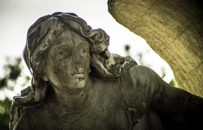 بعد ترميمه.. تمثال تاريخي يتعرض لتخريب جديد بالجزائر (شاهد)