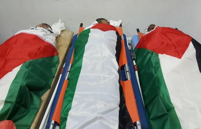 فلسطين   صرف مساعدة مالية لـ2000 من شهداء وجرحى مسيرات العودة
