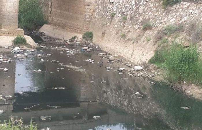 إخبار من مصلحة الليطاني لمنع معاصر الزيتون من رمي الزيبار في النهر
