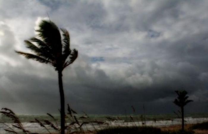 فلسطين | الطقس: أمطار مصحوبة بعواصف رعدية في الأيام القادمة