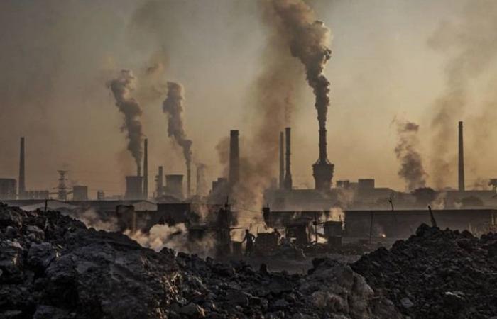 هل يتسبب تلوث الهواء في زيادة مستويات الغباء؟