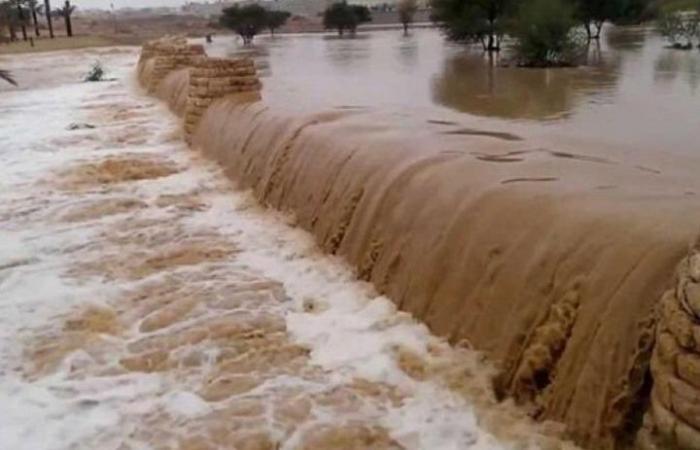 مذكرة لسحب الثقة من وزيرين أردنيين بعد حادثة البحر الميت