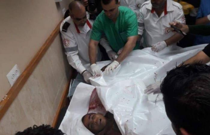 فلسطين   منظمة التحرير تطالب بالتحقيق في جريمة قتل الاطفال