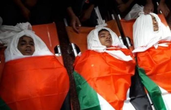 فلسطين   أبو دياك: جريمة اغتيال الأطفال دليل على استهتار إسرائيل بالقانون الدولي