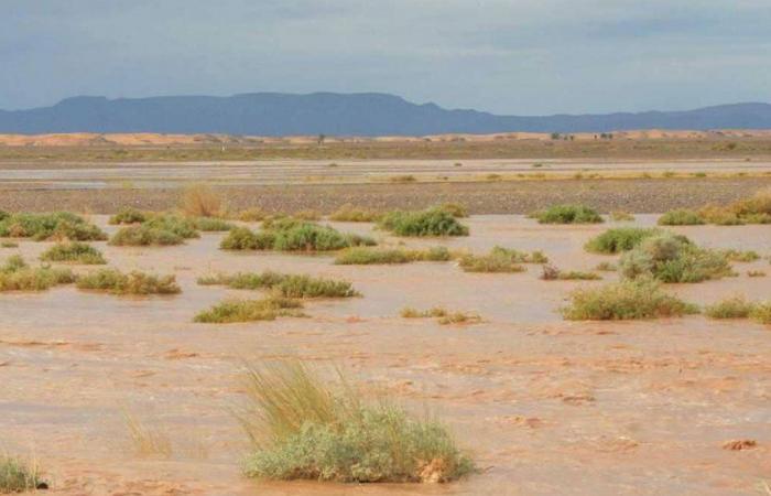 إغراق الصحراء بالمياه لإصلاح كوكب الأرض