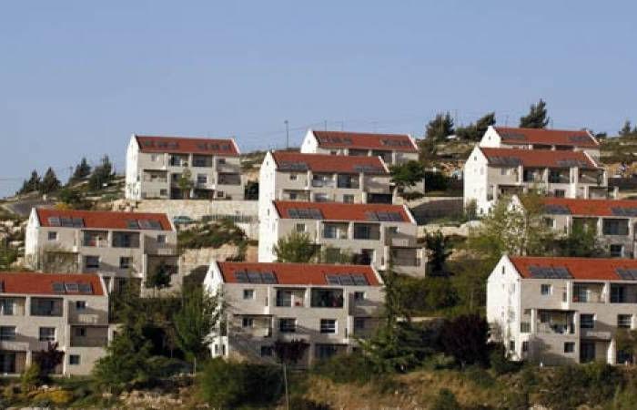 فلسطين | الاحتلال يصادق على مشروع قانون توسيع مستوطنة بسلوان