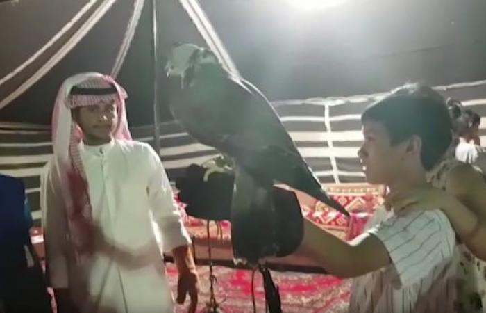 الخليح | شاهد كيف تفاعل الأجانب مع الحياة البدوية بصحراء الظهران