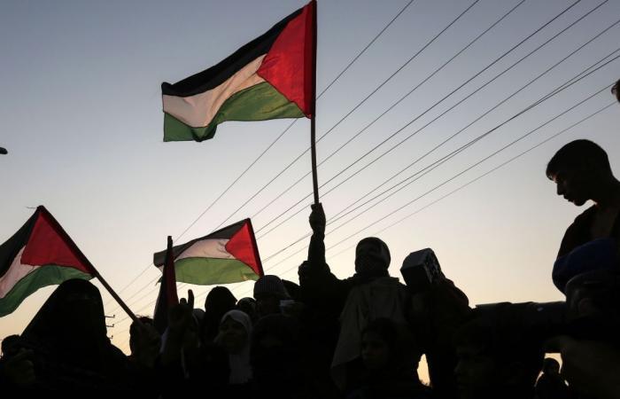 فلسطين   سفارتنا لدى السنغال تحيي ذكرى اعلان الاستقلال
