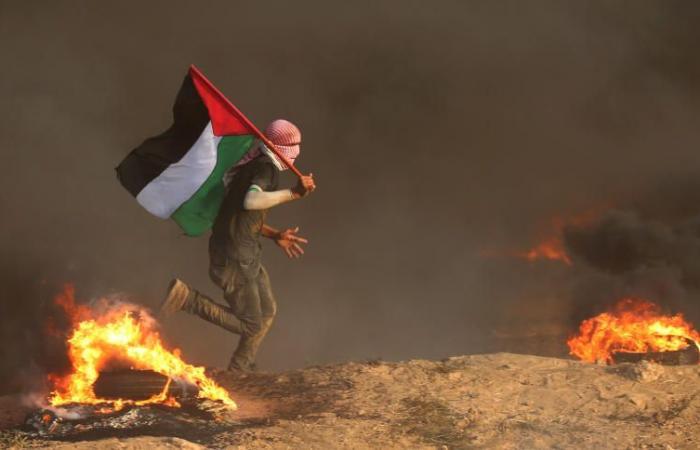 فلسطين | الهيئة الوطنية: نحذر الاحتلال من أي حماقات يفكر بالإقدام عليها ضد شعبنا