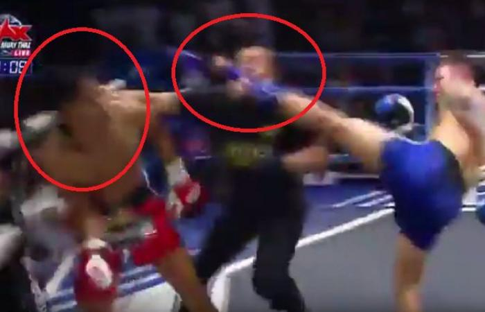 بالفيديو.. ملاكم يُسقط الحكم ومنافسه بضربة قاضية واحدة