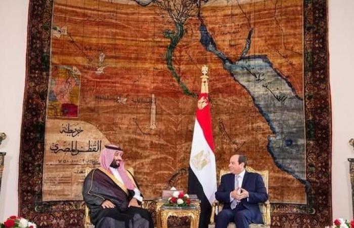 الخليح   ولي العهد السعودي يبحث مع السيسي القضايا المشتركة