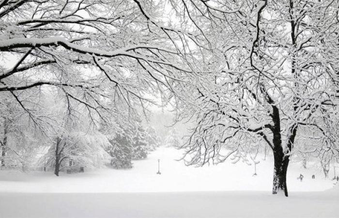 العاصفة الثلجية تغمر بعلبك