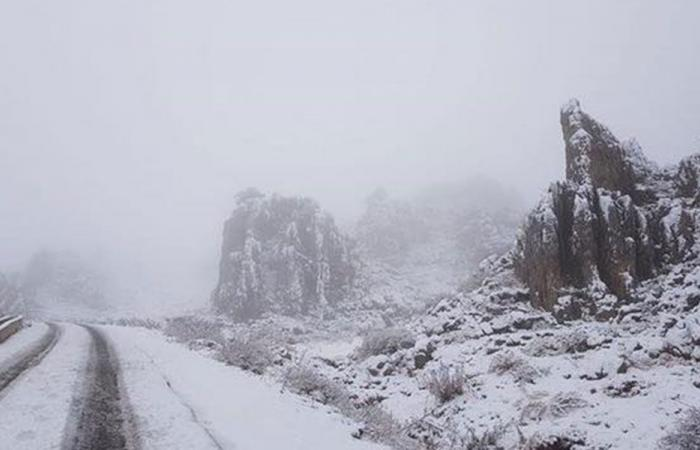 Norma في لبنان… ثلوج وعواصف وأمطار غزيرة
