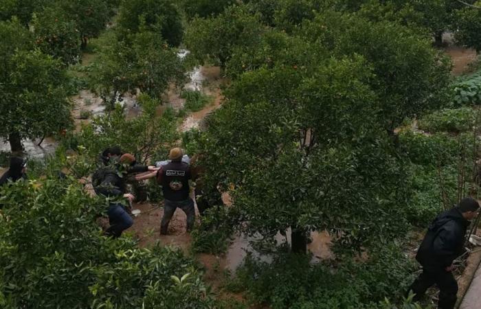 ابنة الـ8 سنوات جثة في بساتين الليمون بالمنية