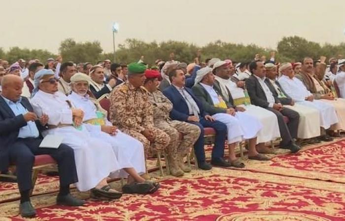 اليمن | قبائل حجور في حجة تتصدى لهجوم حوثي وتأسر 22 عنصراً