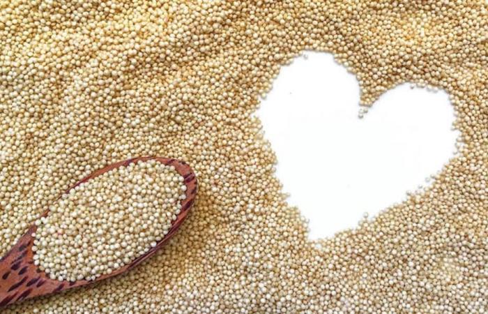 القُطيفة تُنافس أفضل أنواع الحبوب