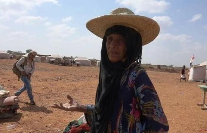 اليمن   اليمن.. قبائل حجور في عمران تستغيث بالتحالف