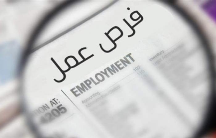 أكثر من 50 ألف وظيفة ستُؤمّن للبنانيين.. فهل تقرّ الحكومة هذا البرنامج؟
