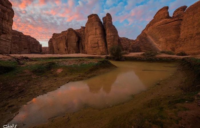 الخليح   صور..تعرف على محمية شرعان ووجهة العالم الطبيعية في 2023