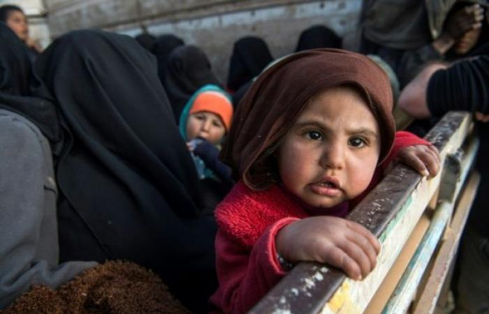 مئات آلاف الرضع يموتون سنويًا بسبب الحروب