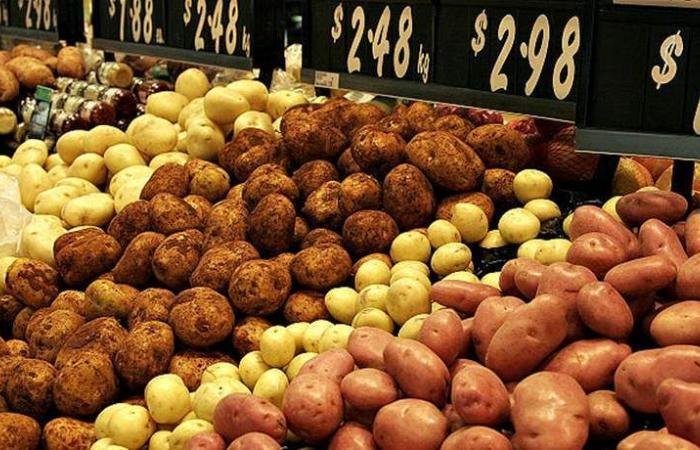 جورج الصقر نقيباً لمزارعي البطاطا في البقاع
