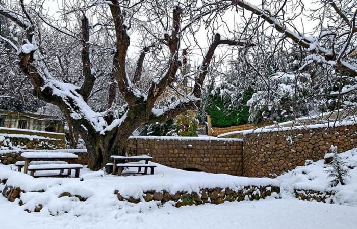 شباط يودّعنا بطقس عاصف.. الأمطار والثلوج تغمر لبنان