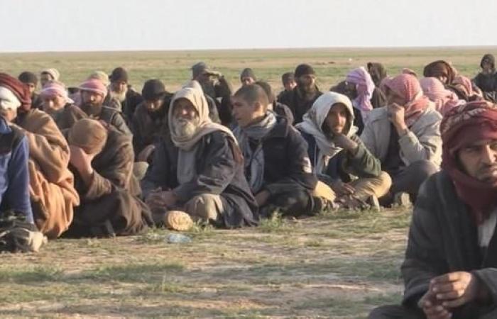 سوريا | أكبر عملية استسلام لداعش…350 عنصرا في أقفاص قسد