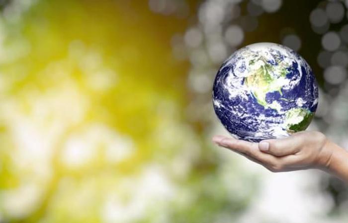 """""""انتهاكات البيئة"""" تتسبب بربع الوفيات والأمراض في العالم"""