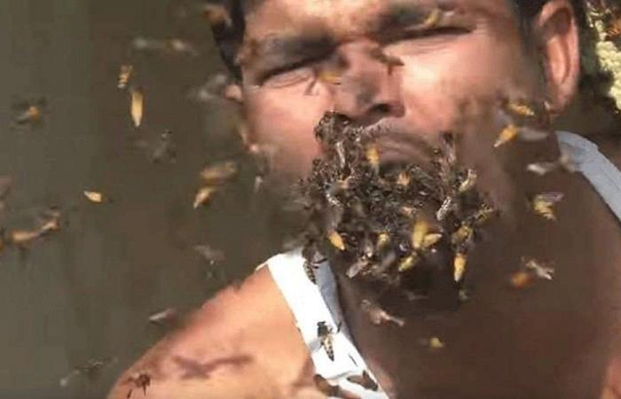 بالفيديو: رجل يأكل آلاف النحلات حية!
