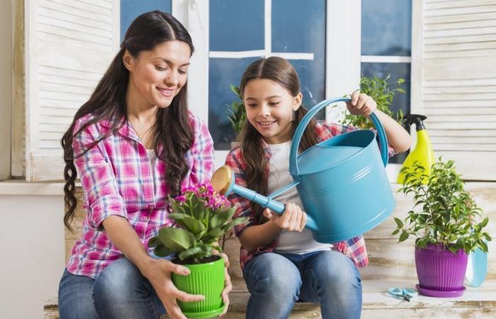 8 تطبيقات تساعدك على الزراعة المنزلية وتجميل حديقتك خلال…