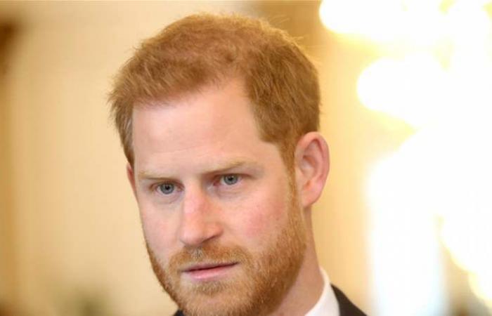 الأمير هاري يشن حرباً على مواقع التواصل الاجتماعي والألعاب الإلكترونية