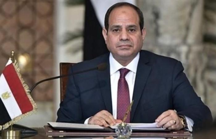 مصر   الرئيس المصري يلتقي رون وايدن عضو مجلس الشيوخ الأميركي