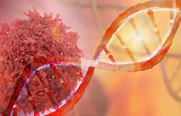 تطوير أول مضاد حيوي للأورام السرطانية