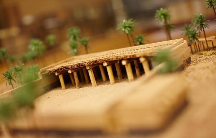 الخليح   تاريخ المدينة المنورة من النبي للآن.. متحف يضم النوادر