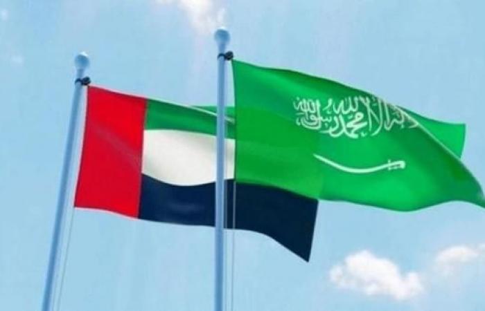الخليح | الإمارات: أمننا وأمن السعودية كلٌّ لا يتجزأ