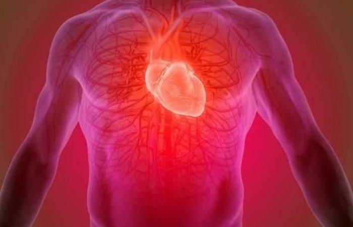 مكمل غذائي فوائده متعددة.. يساعد مرضى القلب وباركنسون