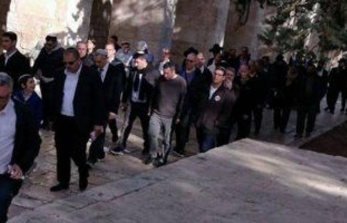 مستوطنون إسرائيليون يضرمون النار فى حقول زراعية جنوب مدينة نابلس
