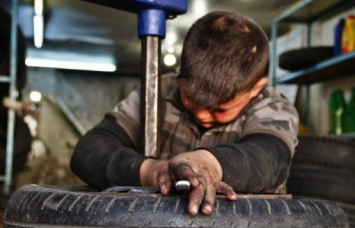 في اليوم العالمي لحمايته.. 215 مليون طفل يعملون بأعمال تضر النمو البدني والعقلي وتؤثر على تعليمهم (فيديو)