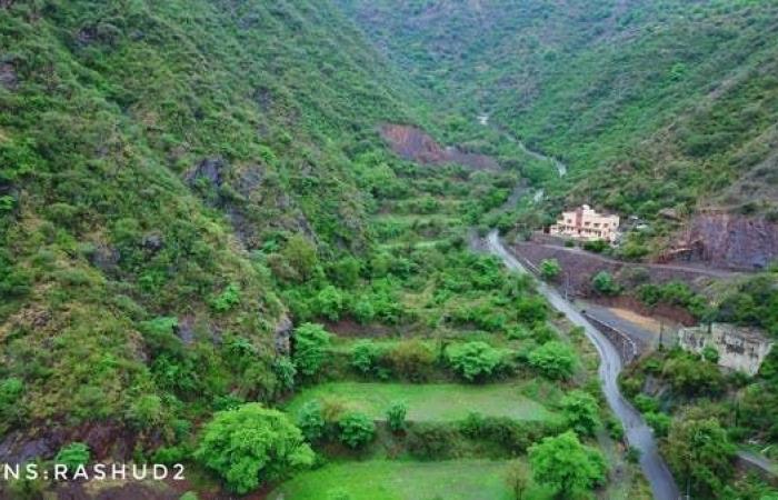 الخليح   شاهد جبال جنوب السعودية مكسوة بغابات خضراء