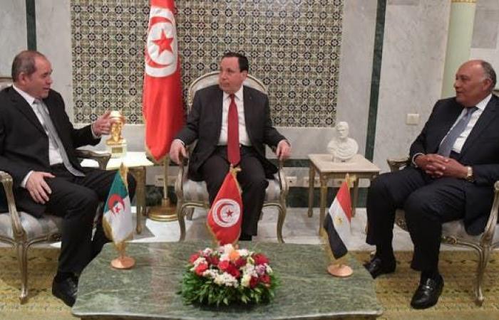 مصر وتونس والجزائر ترفض أي حل عسكري أو تدخل أجنبي بليبيا