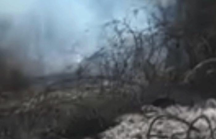 حريق في بلدة مشمش.. ورئيس البلدية يناشد
