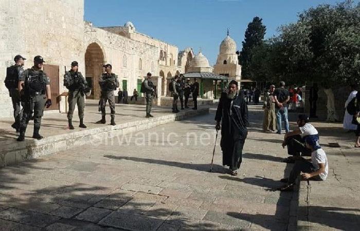 فلسطين | مستوطنون يجددون اقتحاماتهم للأقصى